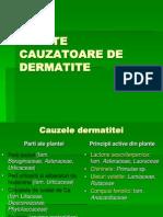 Pl Tox c Ivb - Plante Cauzatoare de Dermatite