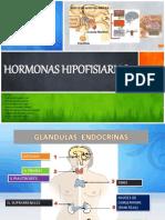 Hormonas Hipofisiarias.pptx