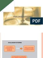 evaluador externo