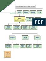 Albero Genealogico_1