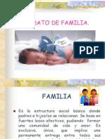 cursotiposdefamilia.pptx