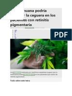 La marihuana podría prevenir la ceguera en los pacientes con retinitis pigmentaria