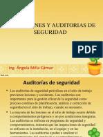 Inspecciones y Auditorias de Seguridad