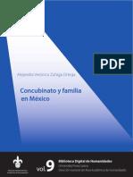 Concubinato Familia Mexico