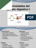 Clase Digestivo I