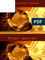 Project Appraisal & Project Syndication
