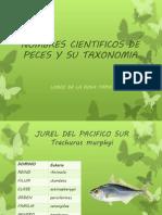 Nombres Cientificos de Peces y Su Taxonomia