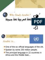 Why Study Arabic