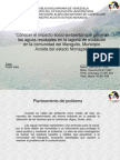 proyecto crismary.ppt
