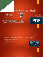 Características del DBMS