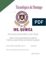 02040802 Valero Tesis Protocolo