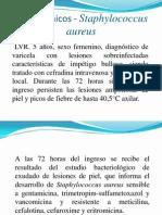Casos Clínicos - Staphylococcus aureus