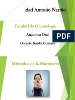 Musculos.ppt
