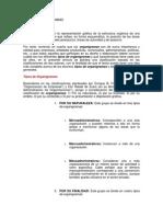 Tipos de Organigramas de Organizaciones ( Estructura Organizacional)