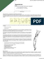 Lecturas_ Educación Física y Deportes, Revista Digital_2