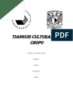 Tianguis Cultural Del Chopo