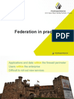 federationinpractice-131031125400-phpapp01