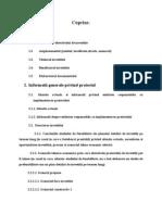 143427484-proiect-fonduri-europene