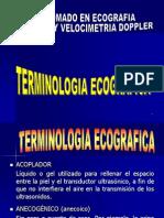 3.- TERMINOLOGIA ECOGRAFICA