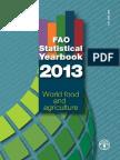 Anuarul Statistic ONU 2013