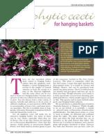 Epiphytic Cacti for Hanging Baskets by Dr R. W. Kohlshreiber