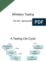 11 White Box Testing