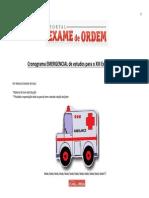Original Cronograma EMERGENCIAL de Estudos Para o XIII Exame Da OAB