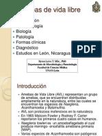 amebasdevidalibreclase30-4-13-130514172339-phpapp02