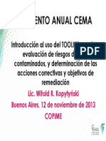 09Evaluacion de Riesgos RBCA Toolkit