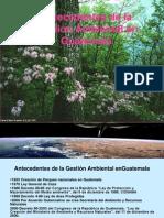 Antecedentes GEstion Ambiental (1a. Presentac)