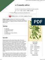 Indijska Konoplja (Cannabis Sativa) - Wikipedija