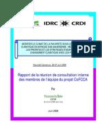 Rapport réunion consultation interne des membres du projet (French)