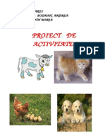 proiect preinspectie