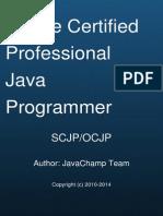 Java Security | Java (Software Platform) | Java (Programming