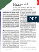 Bacteriofagos Adheridos a Celulas de Mucosa Intestinal Inmunologia