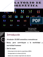 laboratorio de citogenética.pdf
