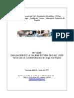 Informe Calidad Vida 2010