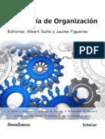 Casos de Ingenieria de Organizacion
