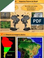 Aspectos Fisicos Do Brasil