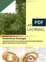 6 AP Lacrimal