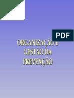 gestão de prevenção