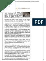Produção experimental de inhame — Companhia de Desenvolvimento dos Vales do São Francisco e do Parnaíba