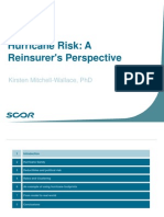 Mitchell WallaceRAA Hurricane Risk - final f.pdf