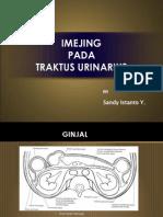 IMEJING TRAKTUS URINARIUS