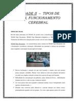 Unidade II - Tipos de Tdah, Funcionamento Cerebral e Comorbidade