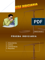 05. Prueba Indiciaria