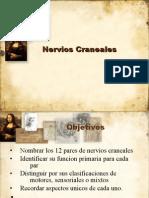NerviosCranealesRev