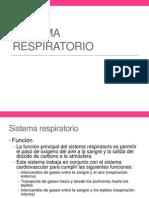 a4014 Sistema Respiratorio