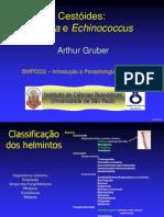 Cestoides Taenia Echinococcus 2012
