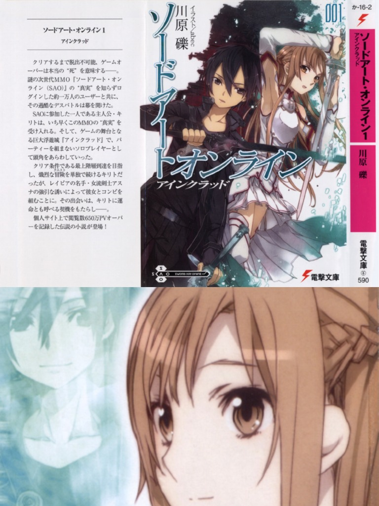 sword art online volume 1 - aincrad | Brain | Virtual Reality